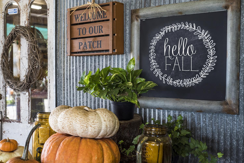 Pumpkins on a haystack