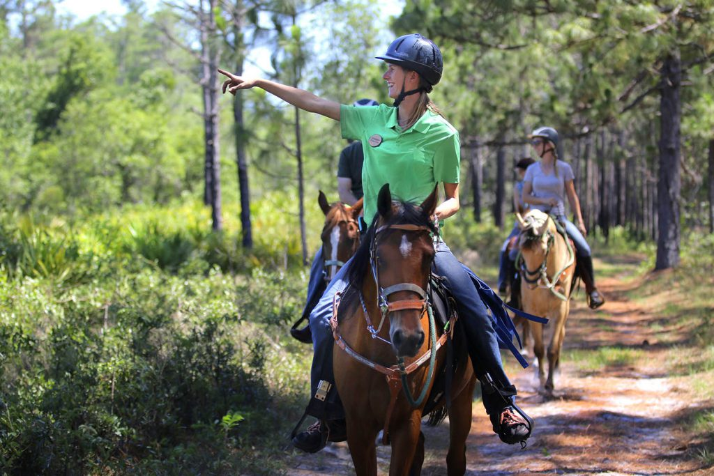 Three people on horse back riding in Lake Louisa State Park.