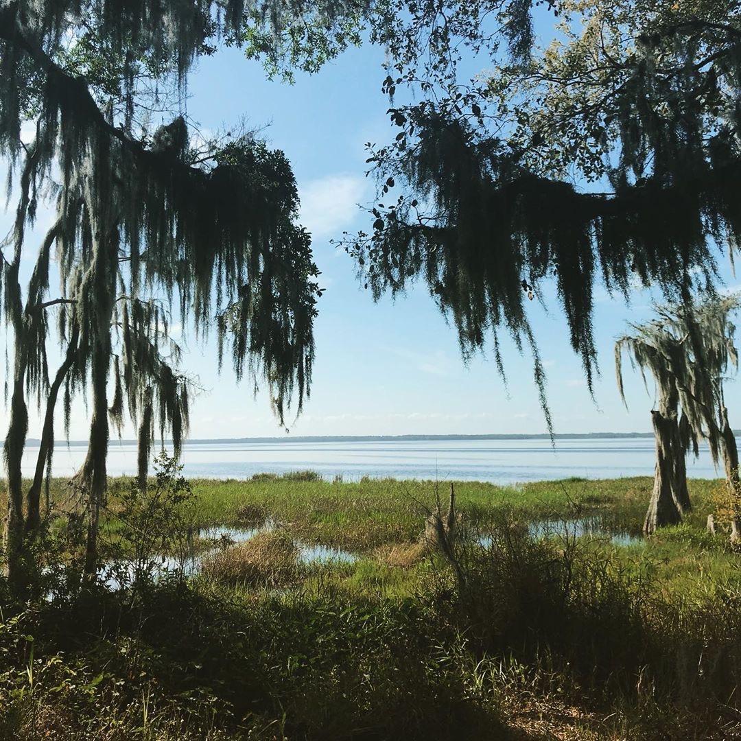 Lake landscape of Lake Louisa in Clermont, FL