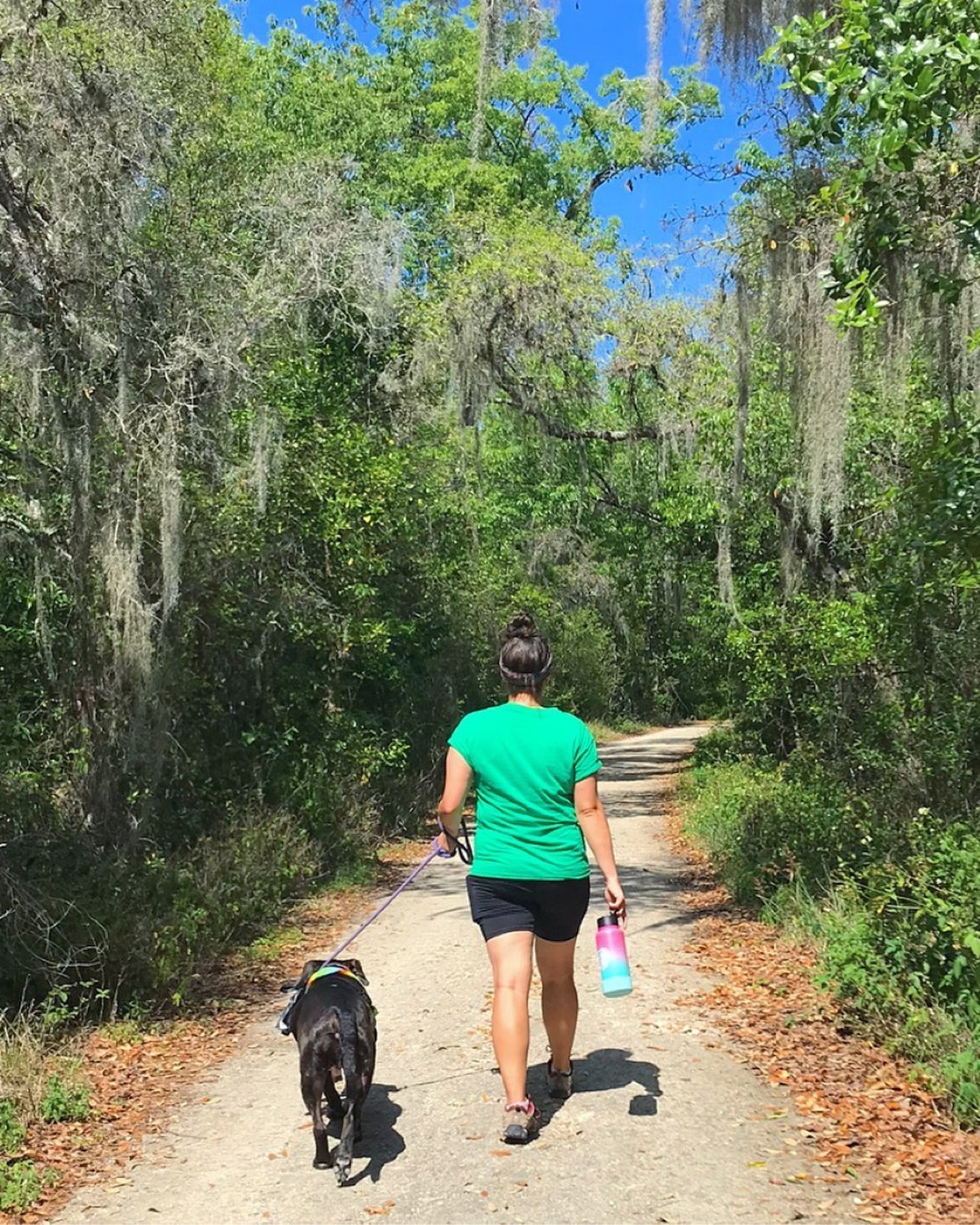 Girl walking a dog on a leash away on a trail with trees on each side of the trail