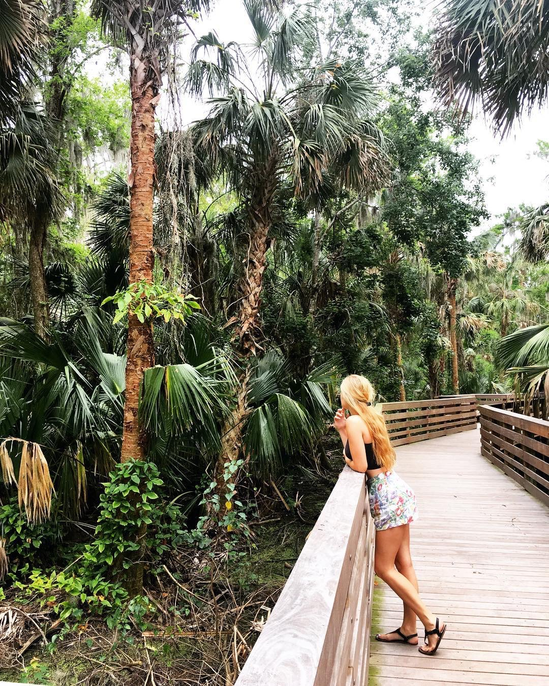 Young woman standing on a boardwalk looking away from the camera towards a palm and oak tree hammock.