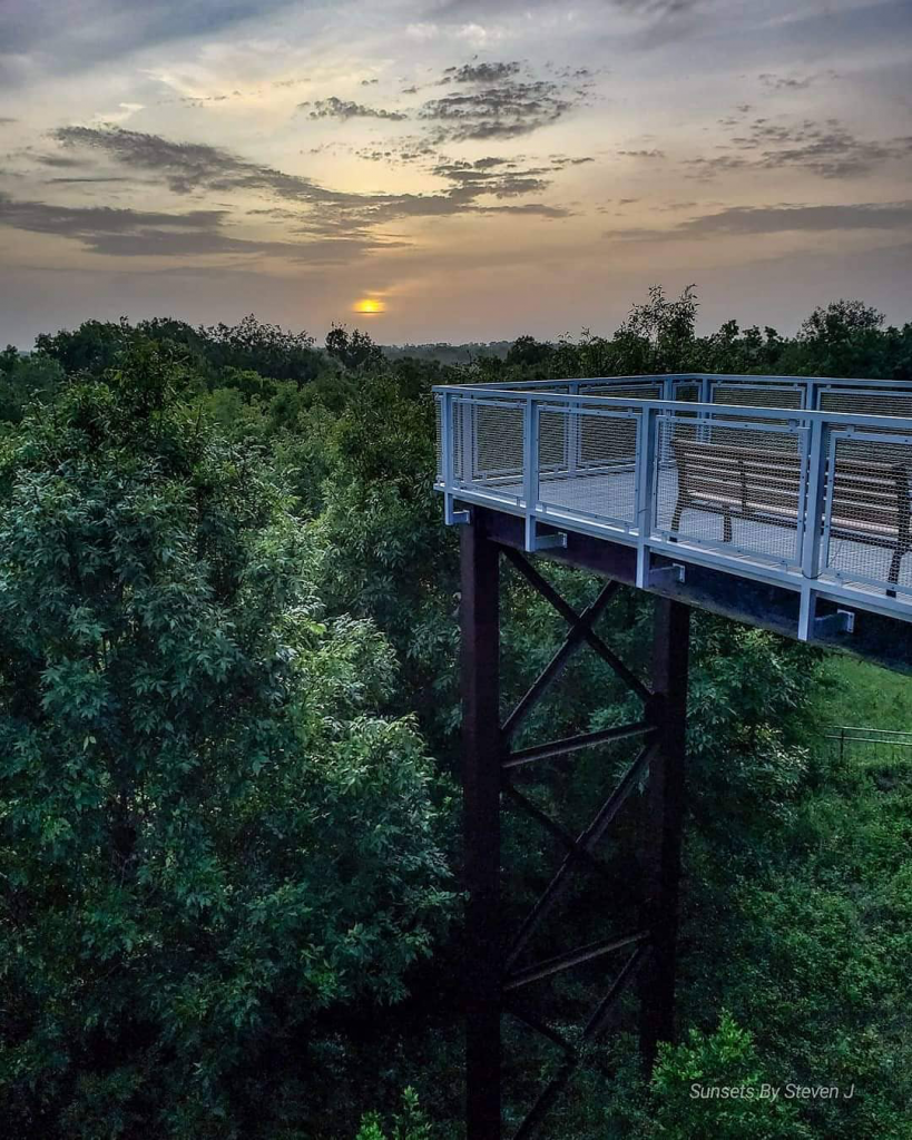 Sunrise with overcast skies with a scenic overlook platform in the foreground over treetops below.