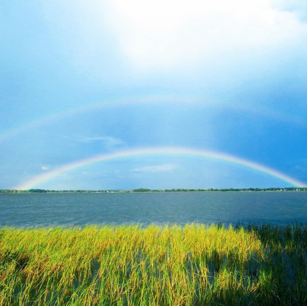 landscape of Little Lake Harris with lake grass in foreground and two rainbows in the sky above the water.