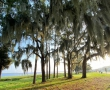 Top 10 Running Spots in Lake County, FL