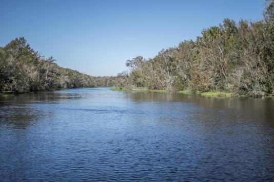 Fishing Forecast for Lake County, FL | October-December, 2020