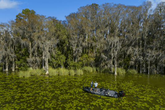 Fall Fishing Forecast for Lake County, FL