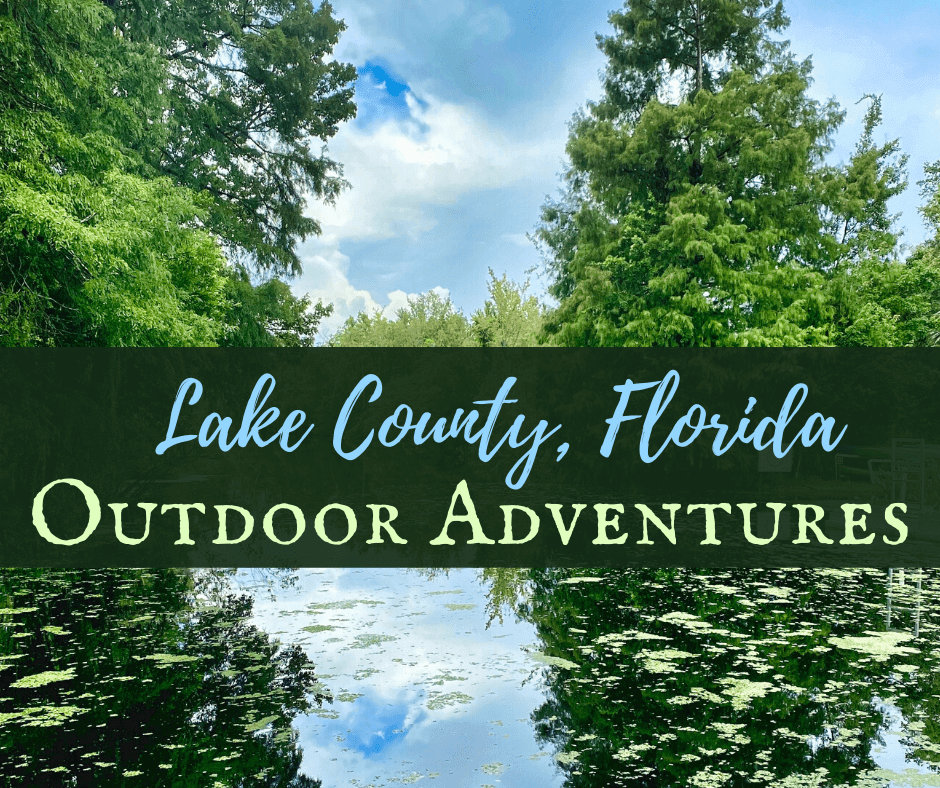 Lake County, Florida Outdoor Adventure. Photo of lake with trees.
