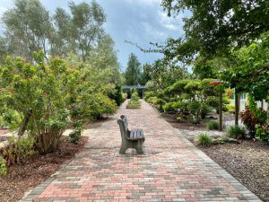 A bench sits on a pathway at Discovery Gardens.