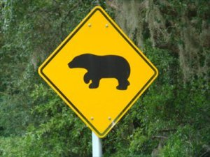 Photo of a road sign depicting a bear.