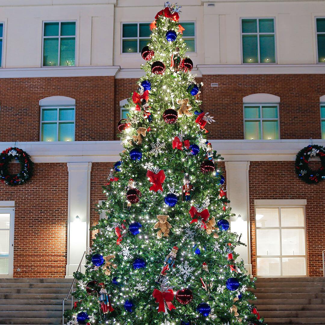 Christmas Tree, Clermont, Christmas, Lights