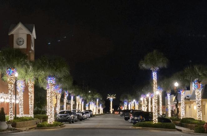 tavares at christmas. trees. lights.