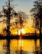 Winter Fishing Forecast for Lake County, FL