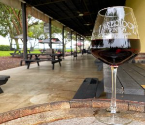Close-up photo of a glass of red wine with picnic tables in the background. Photo is at the Lakeridge Winery.