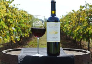 Photo of a glass of red wine and a bottle of red wine within the vinyards at Lakeridge Winery.