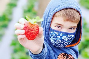 A young boy shows a ripe strawberry to the camera.