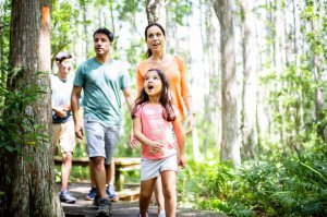 A family of four hikes a nature trail.