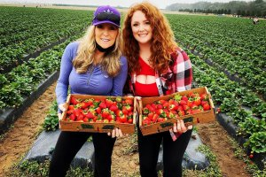 Two women stand together and hold boxes of freshly picked strawberries at Southern Hill Farms.