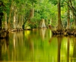 Explore Mount Dora, Florida