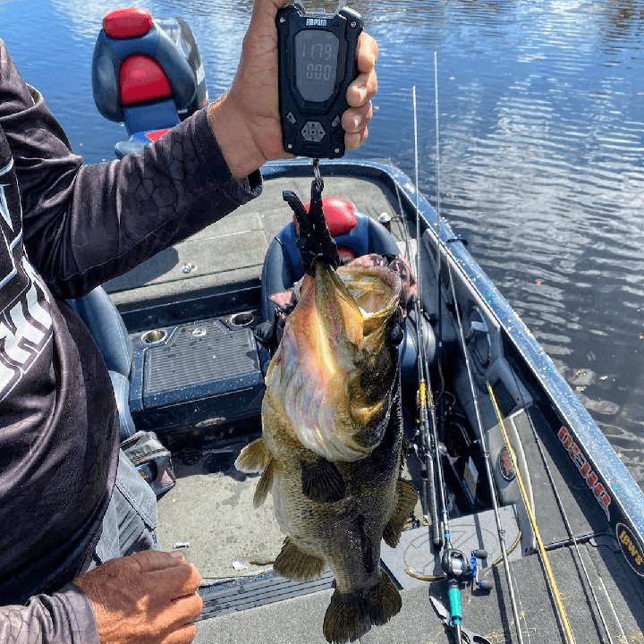 11 lbs 13 oz | Lake Apopka | Earnest Thompson