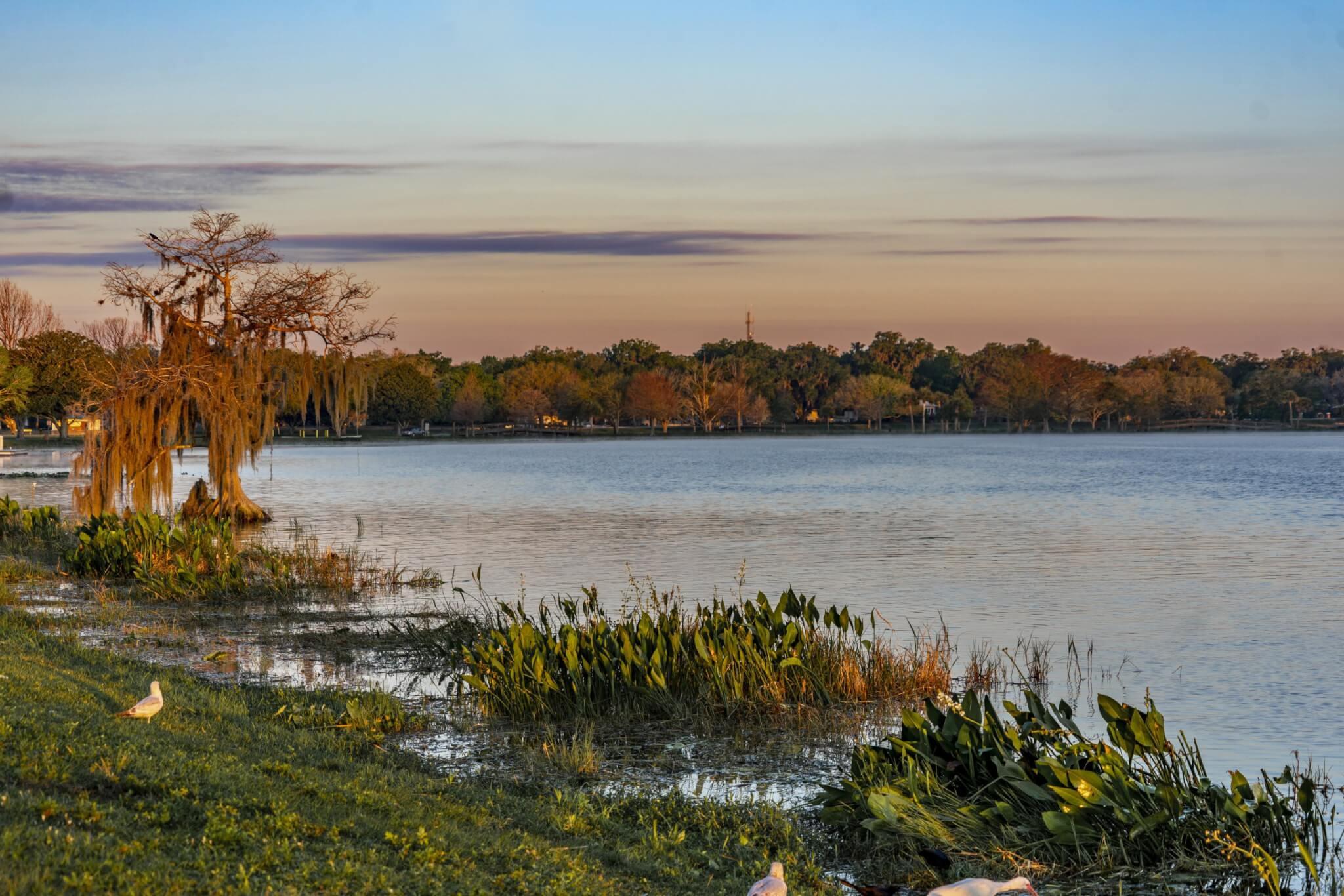 View of Lake Harris from Venetian Gardens in Leesburg.