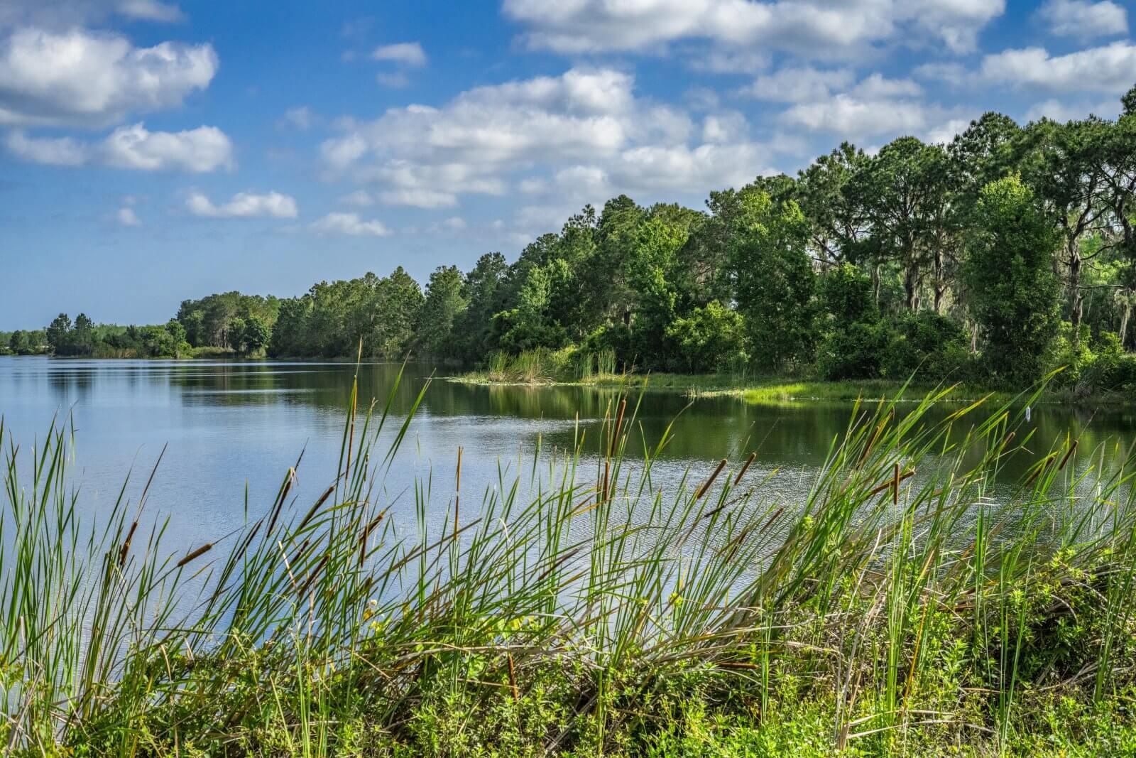 Lake at Revolution Off Road