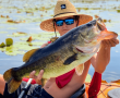 The Best Summer Activities in the Real Florida!